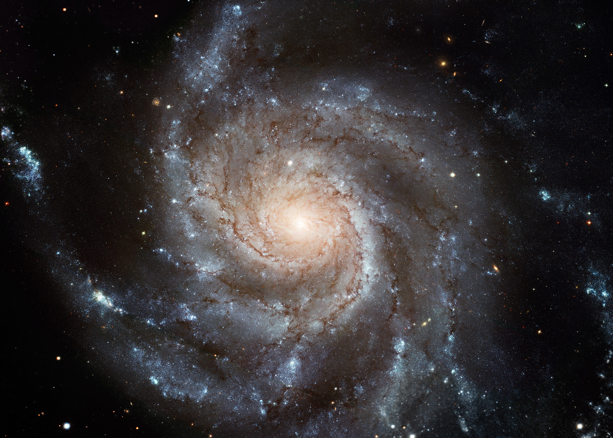 The Pinwheel Galaxy M101