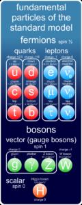 Standard model particles